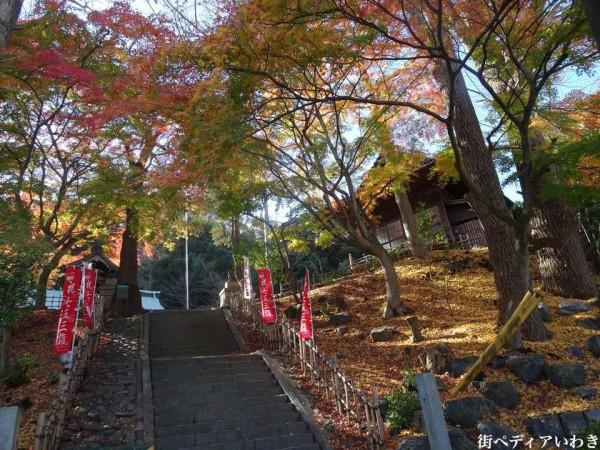 いわき市湯本の温泉神社の紅葉1