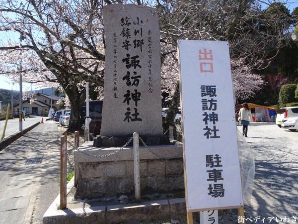 福島県いわき市小川町小川諏訪神社のしだれ桜7
