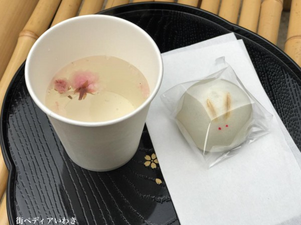 福島県いわき市小川町小川諏訪神社のしだれ桜17