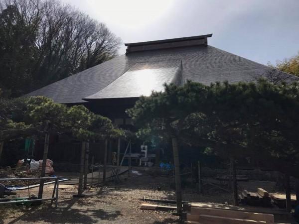 福島県いわき市平山崎の専称寺-梅の名所のお寺-2018-2