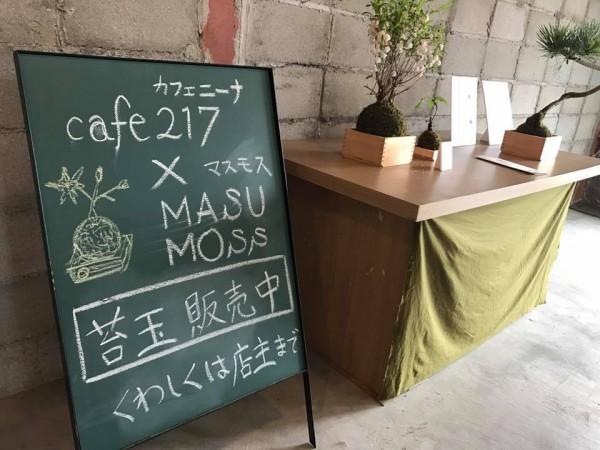 福島県猪苗代町のcafe217カフェニーナ-7