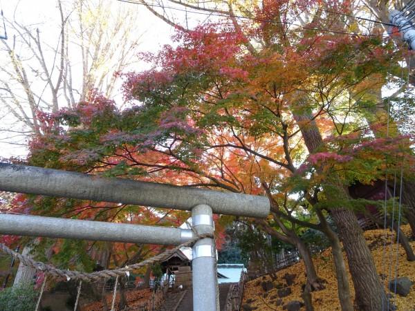 いわき市湯本の温泉神社-181128-2