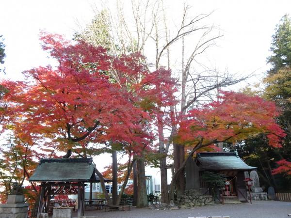いわき市湯本の温泉神社-181128-13