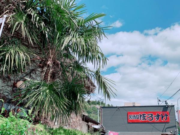 福島県塙町でランチ居酒屋ほろすけレストランコスモス-210407-2